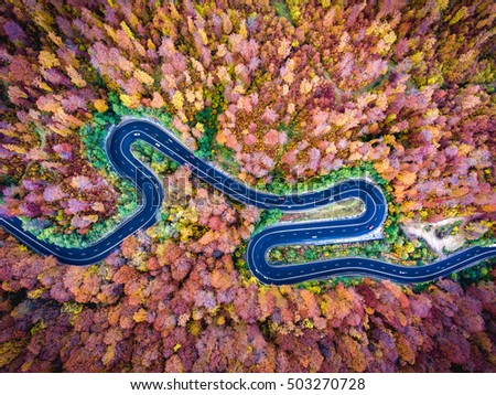 Aerial drone view of a curved winding road through the forest high up in the mountains #503270728