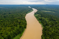 Aerial drone view of a long winding river through a tropical rain forest