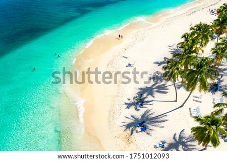 Aerial drone view of beautiful caribbean tropical island Cayo Levantado beach with palms. Bacardi Island, Dominican Republic. Vacation background