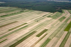 Aerial image of field