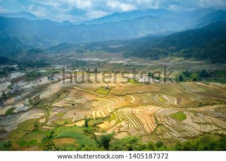 Aerial image of rice terraces in Sang Ma Sao, Y Ty, Vietnam Zdjęcia stock ©