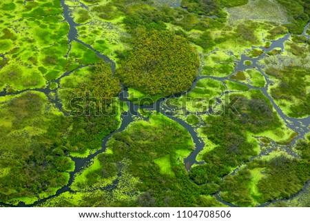 Aerial landscape in Okavango delta, Botswana. Lakes and rivers, view from airplane, UNESCO World Heritage site in South Africa. Green vegetation with water in rainy season.
