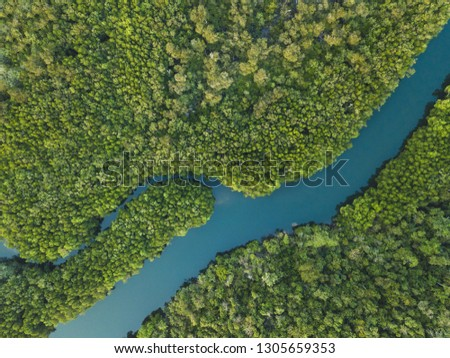 aerial landscape of winding river in forest by drone, beautiful wilderness nature #1305659353