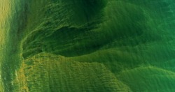 Aerial, ocean surface covered with Cyanobacteria concentrations, Baltic Sea