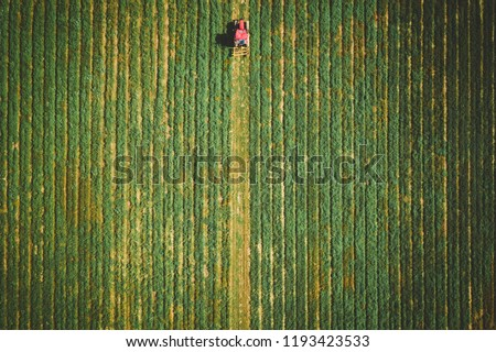 Aerial of Corn Maze in New Jersey #1193423533