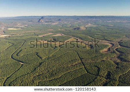Aerial of Forestry Plantations
