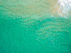 Aerial of Surfers in the ocean at Palm beach, Sydney Australia