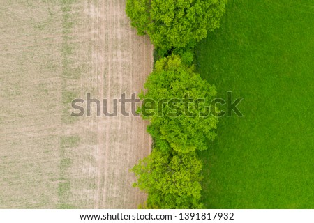Aerial over half lush green grass and fallow dirt field with trees and hedgerow English countryside