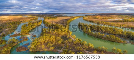 Aerial panorama of Murray River and Wachtels Lagoon among islands of gum trees at sunset. Riverland, South Australia #1176567538