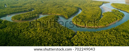 Aerial panoramic mangrove forest view in the Phang Nga bay, Thailand
