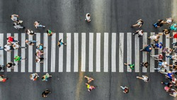 Aerial. Pedestrians on a zebra crosswalk. Top view.