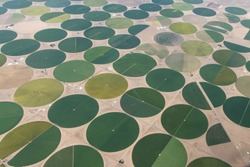 Aerial Photo of Circular Irrigated Fields near Center, Colorado, USA
