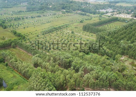 Aerial photo of green farms, trees and houses in Thailand