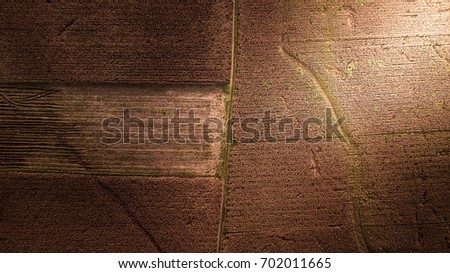Aerial photography Pattern on the Earth Field Corn Farm Abstract Harvest Season