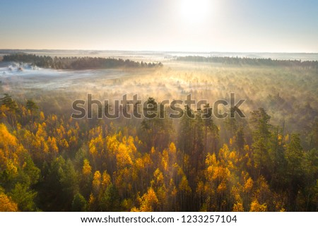 Aerial shot of foggy autumn morning at swamp Astravy Duleby, Belarus