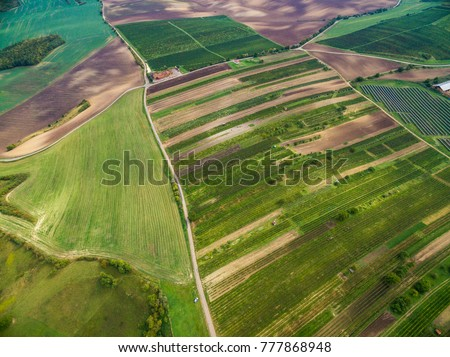 Aerial shot of the vineyards among the green fields of South Moravia, Czech Republic