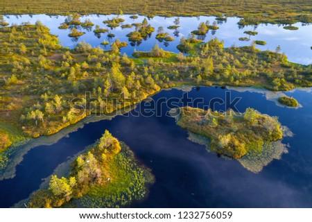 Aerial shot of Yelnya swamp, Belarus