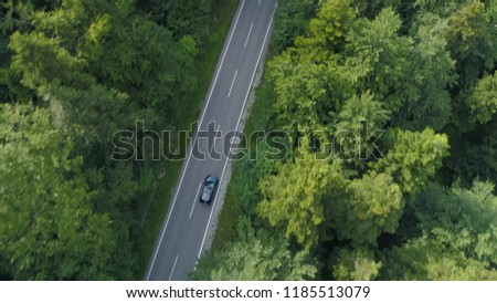 AERIAL, TOP DOWN: Tourists on a relaxing drive through the idyllic dark green forest in the countryside. Car driving down the empty concrete trail running across the vast woods of beautiful Slovenia.