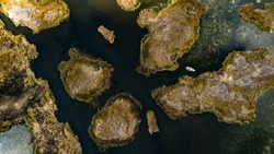 Aerial top-down view on abstract forms and shapes created by Totora plants and shallow waters of Lake Titicaca with reflections of clouds, close to the Uros Floating Islands in Peru.