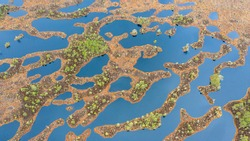 Aerial top-down view to the complex pattern of peat bog pools and intermediate ridges in natural pristine Estonian-Latvian cross-border peat bog