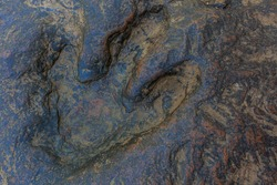 Aerial top view dinosaur footprint, Real dinosaur footprint , Thailand.
