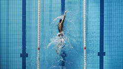 Aerial Top View Male Swimmer Swimming in Swimming Pool. Professional Athlete Training for the Championship, using Front Crawl, Freestyle Technique. Top View Shot