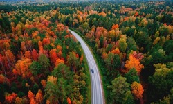 Aerial top view Nature autumn road in yellow forest, concept of trip by red car.