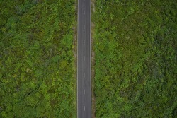 Aerial top view of rural straight road in Flores Island, Azores, Portugal