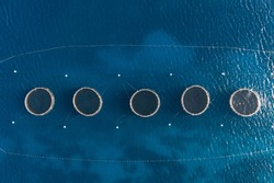 Aerial top view of the rings of tuna farm in the Mediterranean sea. Europe. Malta country