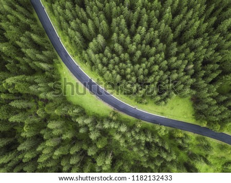 aerial veiw of empty road in green forest. drone shot #1182132433