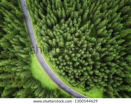 aerial veiw of empty road in green forest. drone shot #1300544629