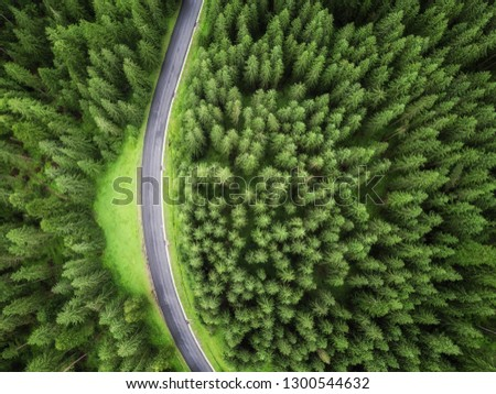 aerial veiw of empty road in green forest. drone shot #1300544632