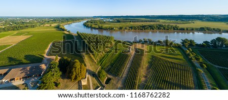 Aerial view, Bordeaux vineyard, entre deux mers, Portets, Gironde, France, River Garonne, filmed by drone