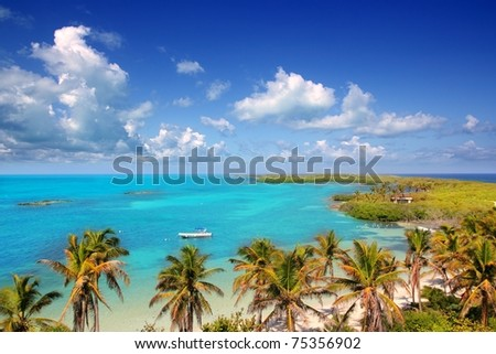aerial view Contoy tropical caribbean island Mexico palm trees and sea