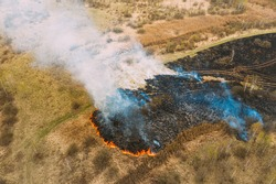 Aerial View. Dry Grass Burns During Drought And Hot Weather. Bush Fire And Smoke In Meadow Field. Wild Open Fire Destroys Grass. Nature In Danger. Ecological Problem Air Pollution. Natural Disaster
