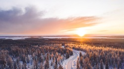 Aerial view from drone of snowy pines of endless coniferous forest trees in Lapland National park, bird's eye scenery  view of natural landmark in Riisitunturi on winter season at sunset golden light