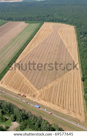 Aerial View: Golden Wheat field