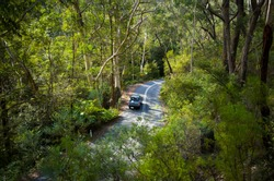 Aerial view of a car driving down a mountain road winding through lush rainforest. Way to Megalong Valley in the Blue Mountains of Australia.