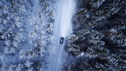 Aerial view of a car on winter road in the forest. Aerial photography of snowy forest with car on the road. Aerial photo.