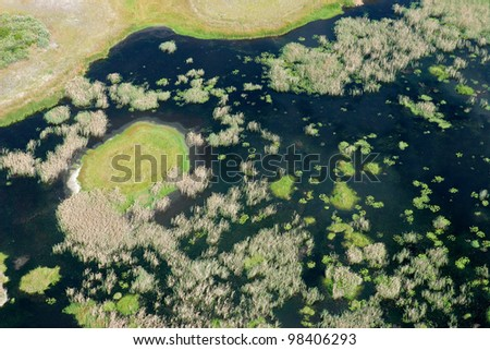 Aerial view of a coastal wetland along the tropical coast of Mozambique, southern Africa