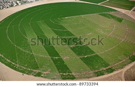 Aerial view of a crop circle in the Southwest