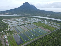 Aerial view of a fishery and prawn farm in Santubong area of Sarawak, Malaysia