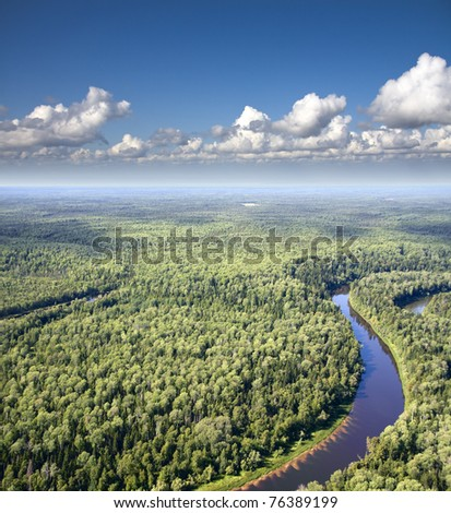Aerial view of a forest river.
