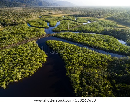 aerial view of a rainforest in...