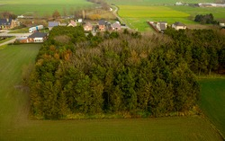 Aerial view of a small forest, in the Flemish commune of Sint-Gillis-Waas