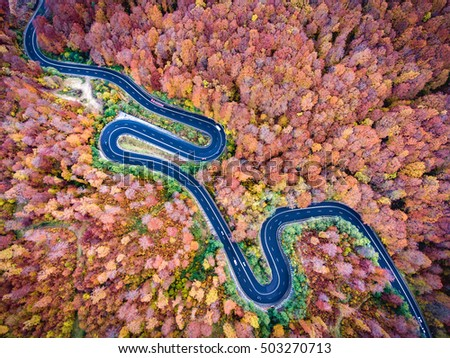 Aerial view of a winding road in the mountains in autumn season #503270713
