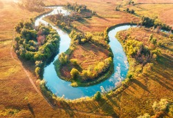 Aerial view of beautiful curving river at sunrise in autumn. View from air. Turns of river, meadows, orange grass, trees at dawn. Colorful aerial landscape of river coast at sunset in fall. Top view