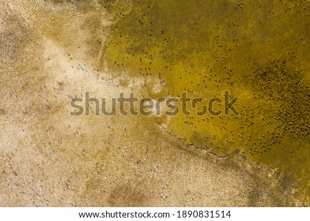 Aerial view of beautiful sodic lakes at Kiskunság National Park, Fülöpszállás Hungary. Hungarian name is Kelemen-szék. This area is the second largest saline steppe of the Hungarian Great Plain. Stock fotó ©