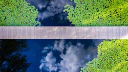 Aerial view of Bridge over a pond