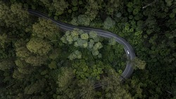Aerial View of Car Driving Down Road Through Forest